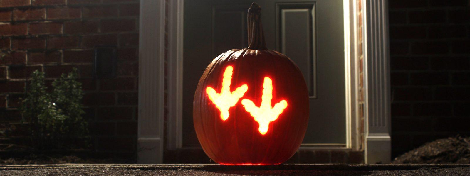 Hokie tracks on a pumpkin